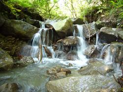 きれいな滝
